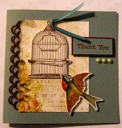 Bird Appreciation
