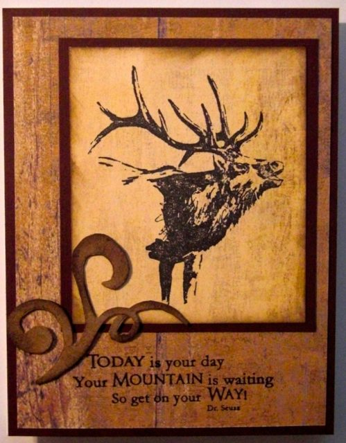 Today is your day – Elk