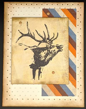 Distressed Elk
