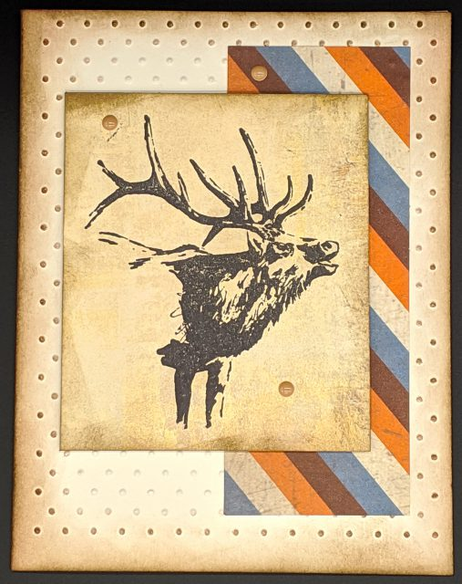 Distressed Elk